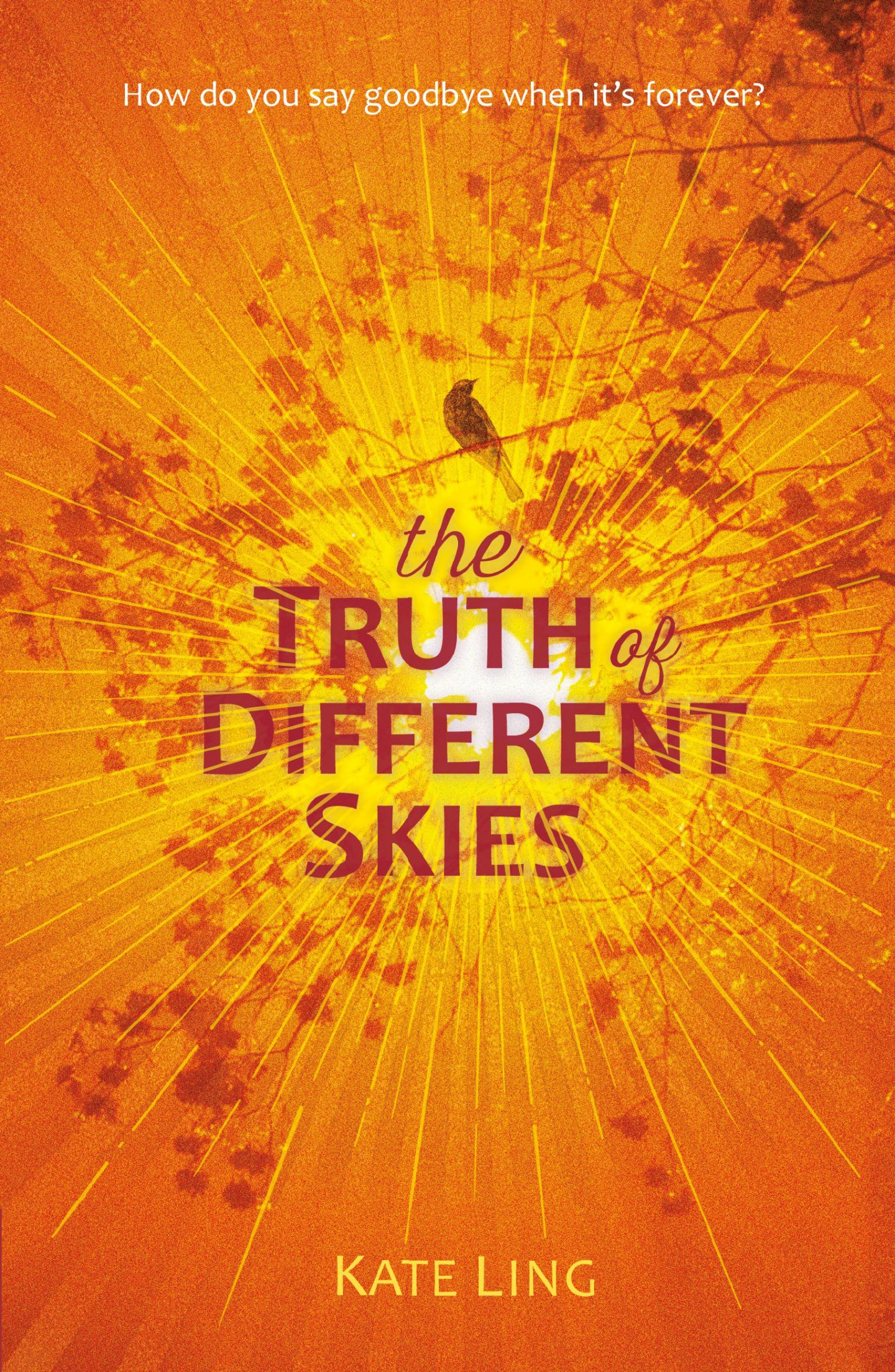 Review: The Truth of Different Skies by Kate Ling